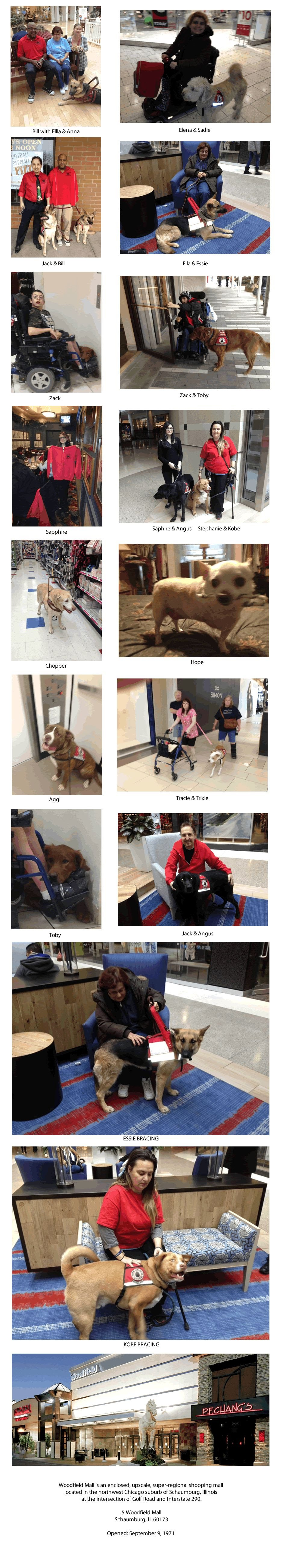 https://sites.google.com/site/barkingangelsservicedogs/home/shopping-at-woodffield-mall---03-01-2015